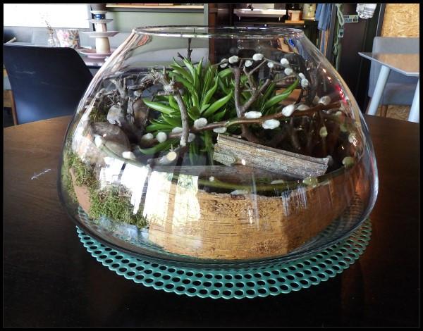 Plant in glaswerk